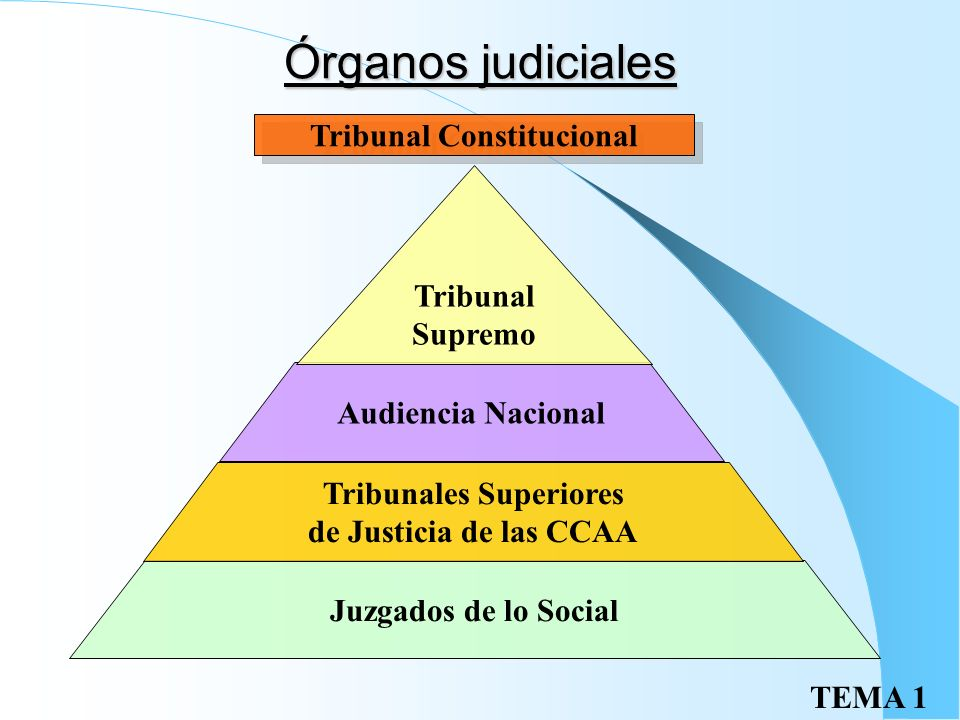 Tribunal Constitucional Tribunales Superiores