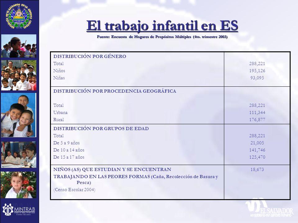 El trabajo infantil en ES Fuente: Encuesta de Hogares de Propósitos Múltiples (4to. trimestre 2003)