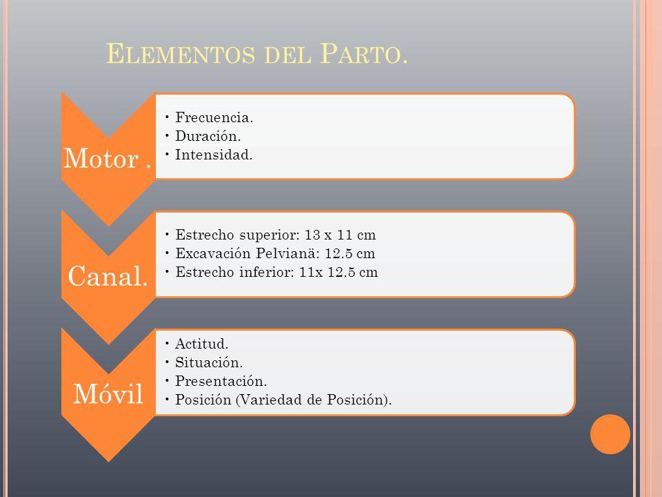 Elementos del Parto. Motor . Frecuencia. Duración. Intensidad. Canal.