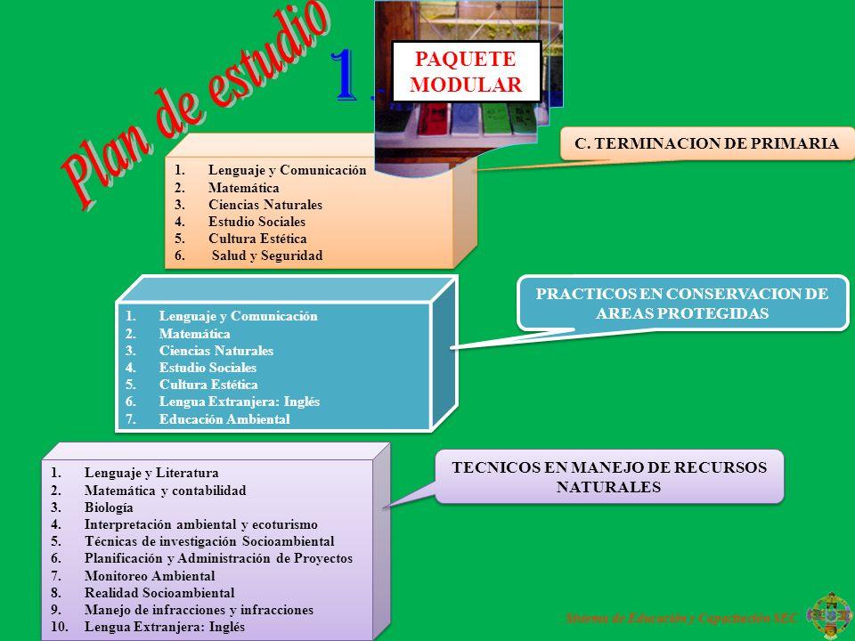 1.- Plan de estudio PAQUETE MODULAR C. TERMINACION DE PRIMARIA