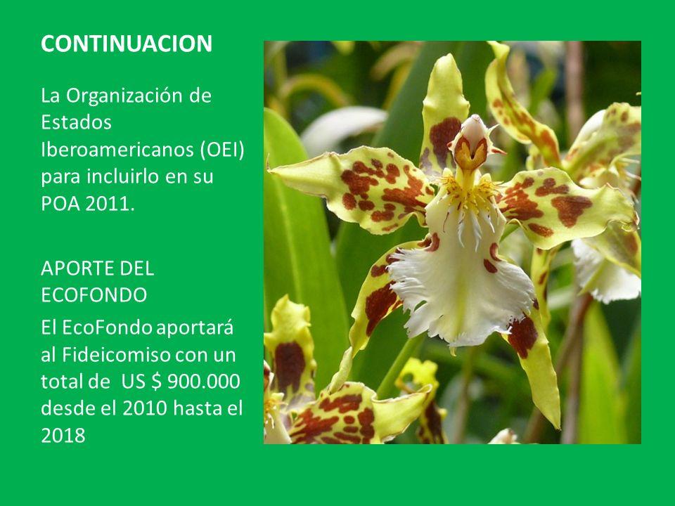 CONTINUACION La Organización de Estados Iberoamericanos (OEI) para incluirlo en su POA 2011. APORTE DEL ECOFONDO.