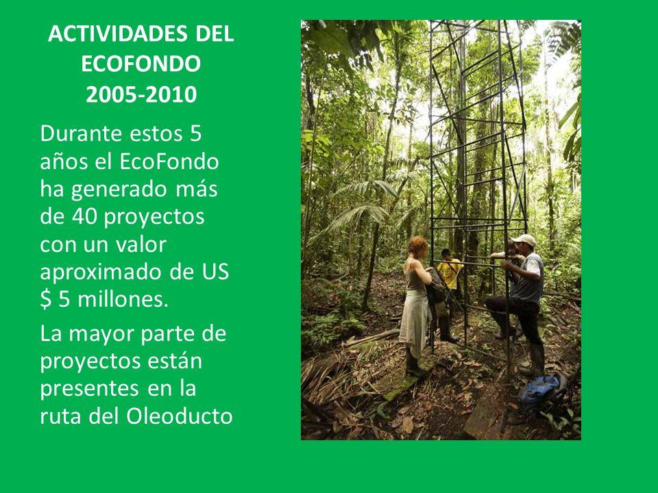 ACTIVIDADES DEL ECOFONDO 2005-2010