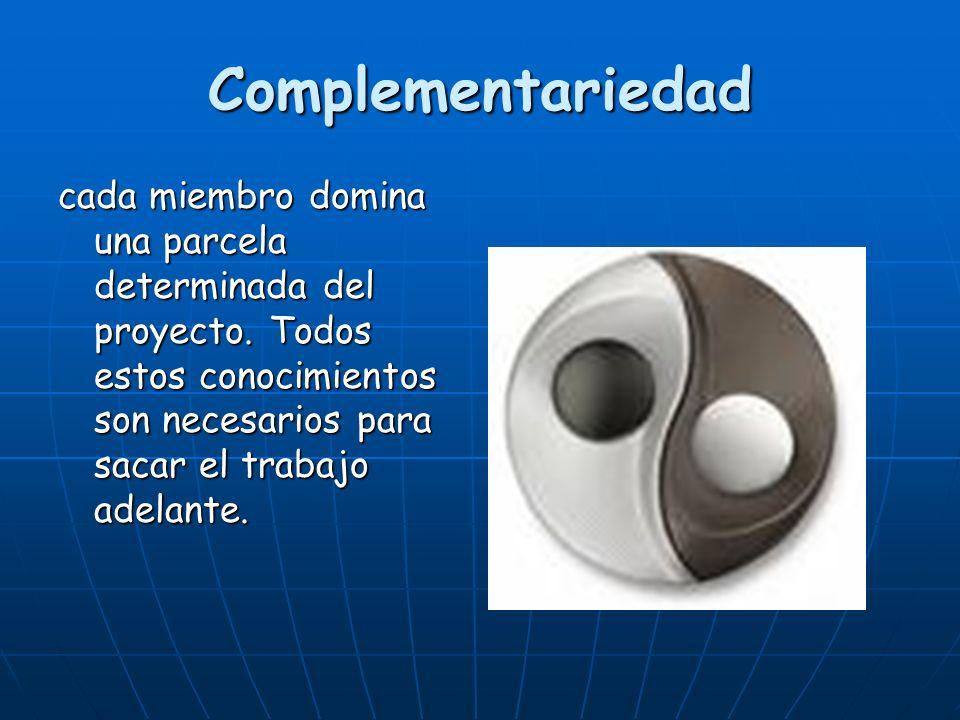 Complementariedad cada miembro domina una parcela determinada del proyecto.