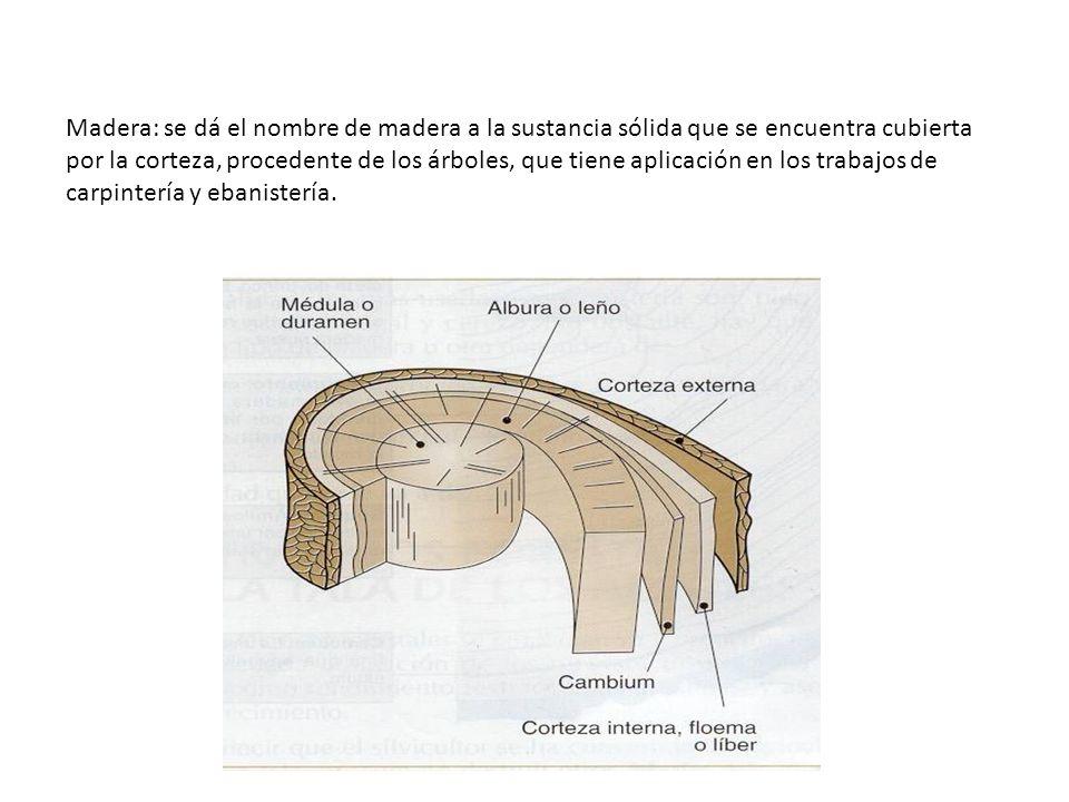 Madera: se dá el nombre de madera a la sustancia sólida que se encuentra cubierta por la corteza, procedente de los árboles, que tiene aplicación en los trabajos de carpintería y ebanistería.