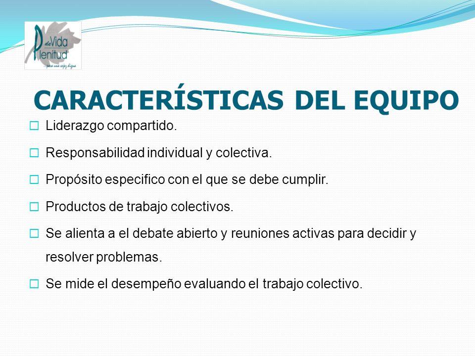 CARACTERÍSTICAS DEL EQUIPO