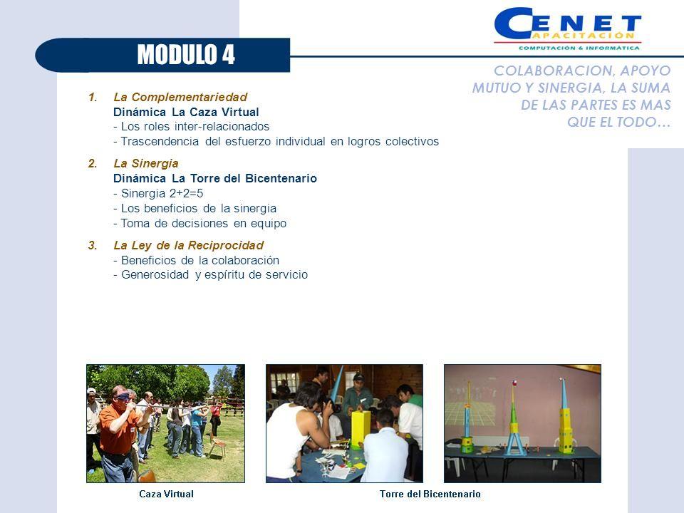 MODULO 4 COLABORACION, APOYO MUTUO Y SINERGIA, LA SUMA