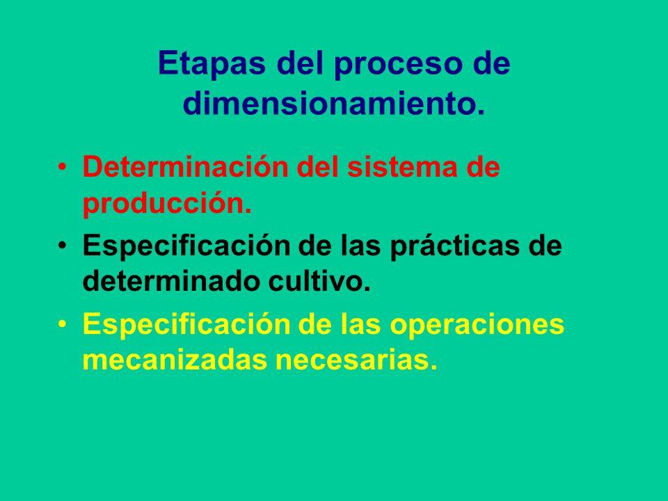Etapas del proceso de dimensionamiento.