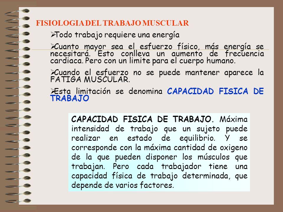 FISIOLOGIA DEL TRABAJO MUSCULAR
