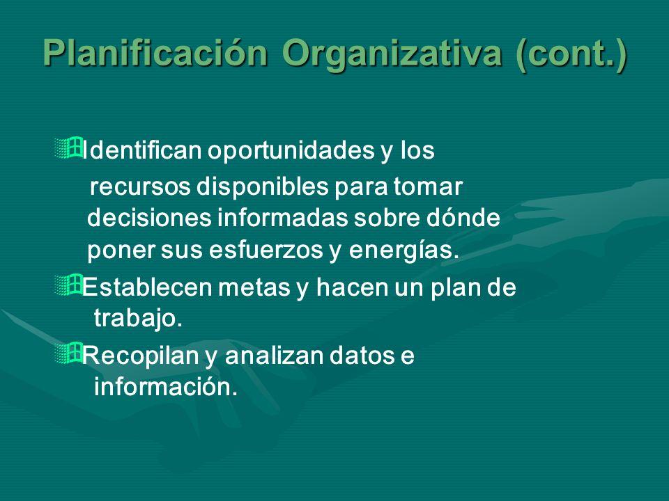 Planificación Organizativa (cont.)