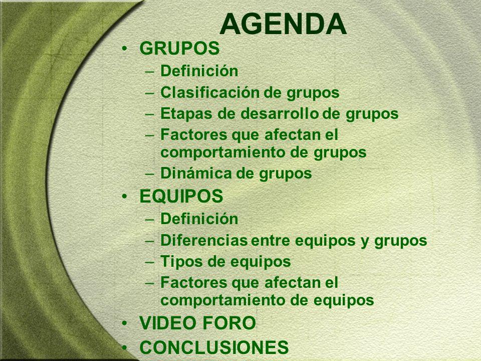AGENDA GRUPOS EQUIPOS VIDEO FORO CONCLUSIONES Definición