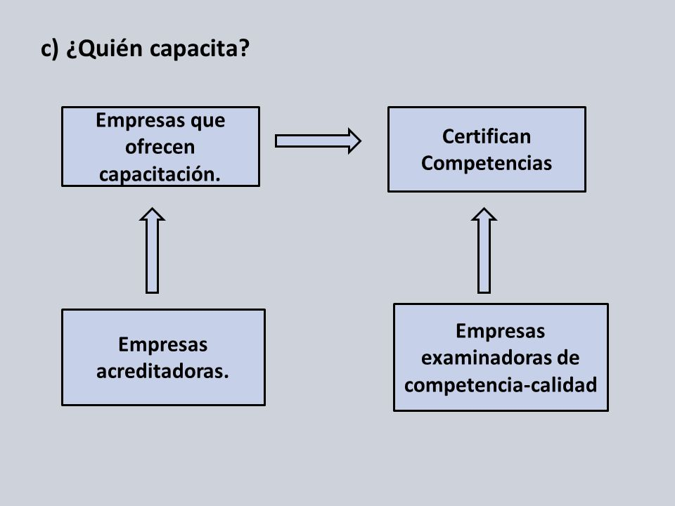 c) ¿Quién capacita Empresas que ofrecen capacitación.