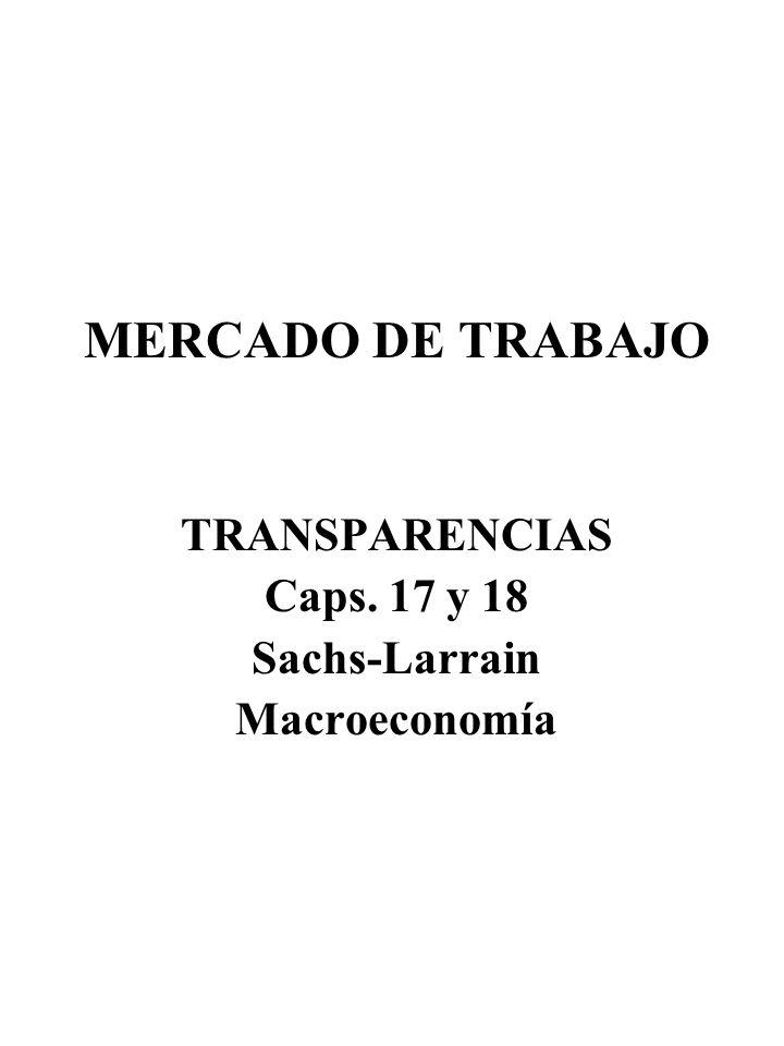 MERCADO DE TRABAJO TRANSPARENCIAS Caps. 17 y 18 Sachs-Larrain