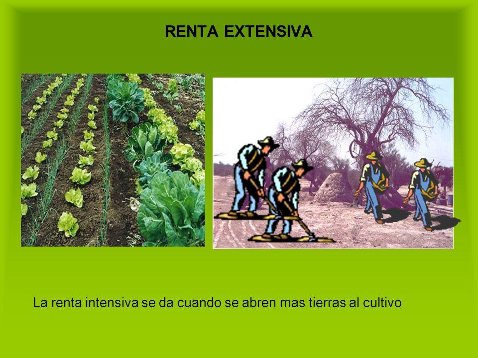 RENTA EXTENSIVA La renta intensiva se da cuando se abren mas tierras al cultivo