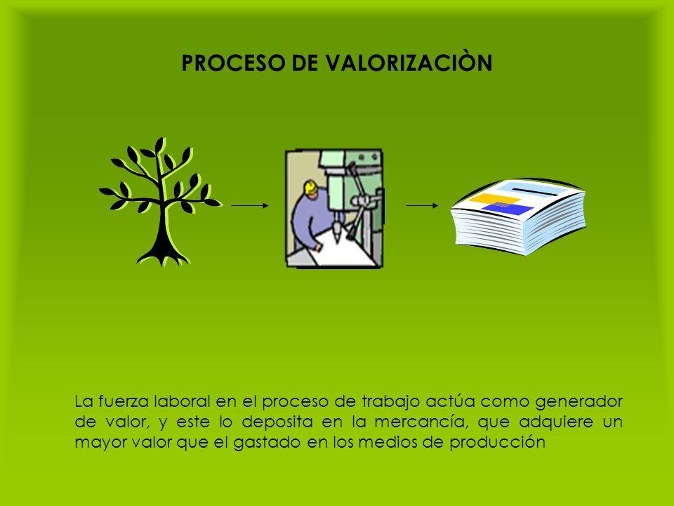 PROCESO DE VALORIZACIÒN