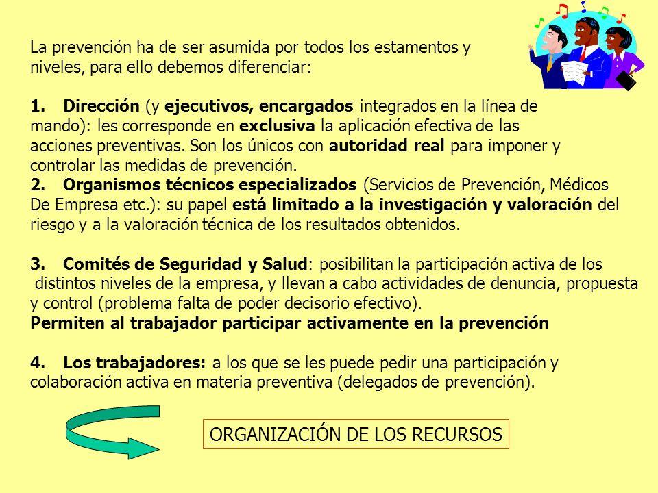 ORGANIZACIÓN DE LOS RECURSOS