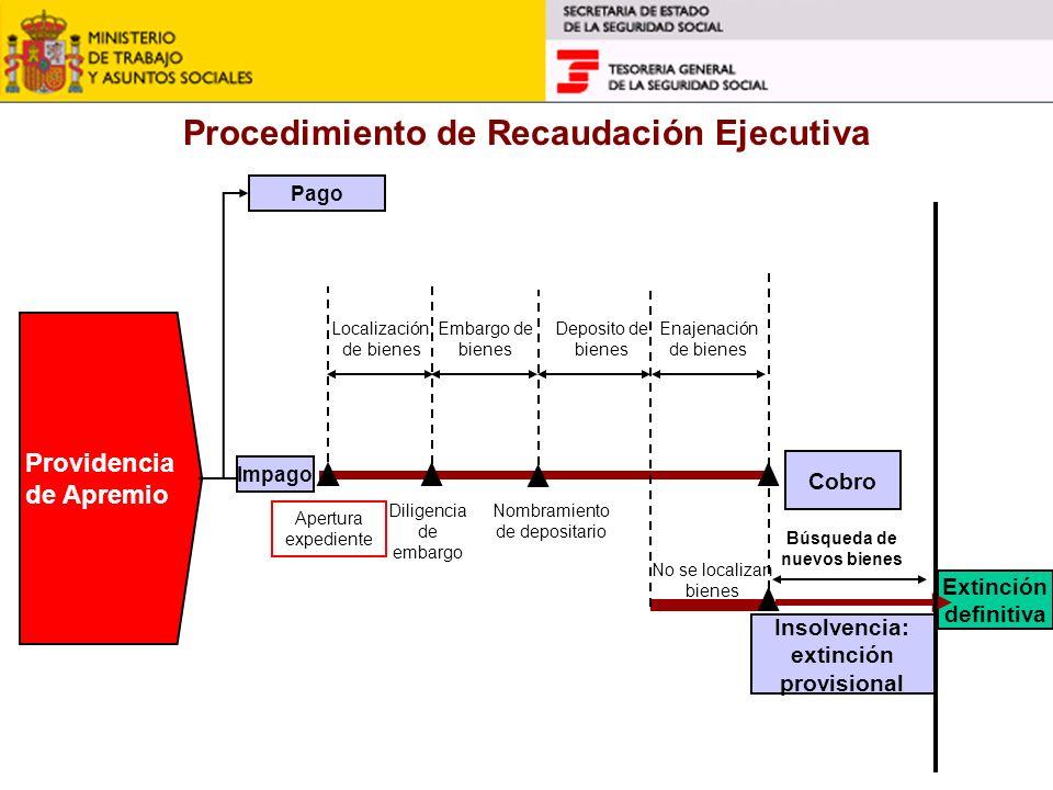 Procedimiento de Recaudación Ejecutiva