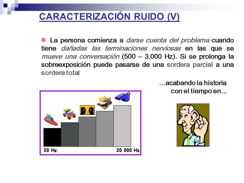 CARACTERIZACIÓN RUIDO (V)