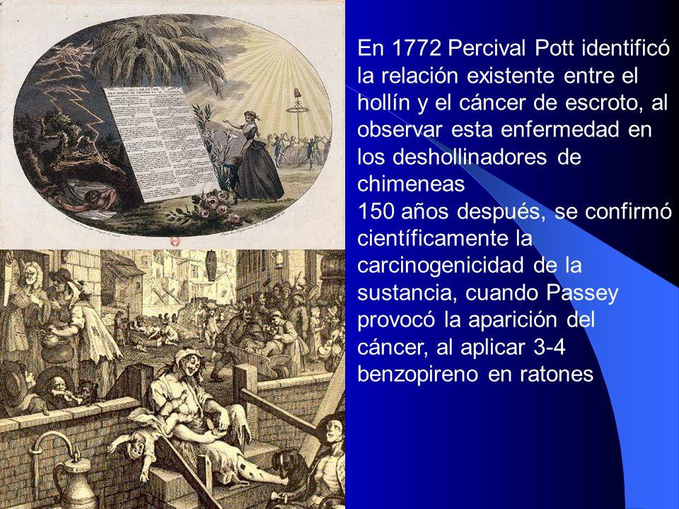 En 1772 Percival Pott identificó la relación existente entre el hollín y el cáncer de escroto, al observar esta enfermedad en los deshollinadores de chimeneas