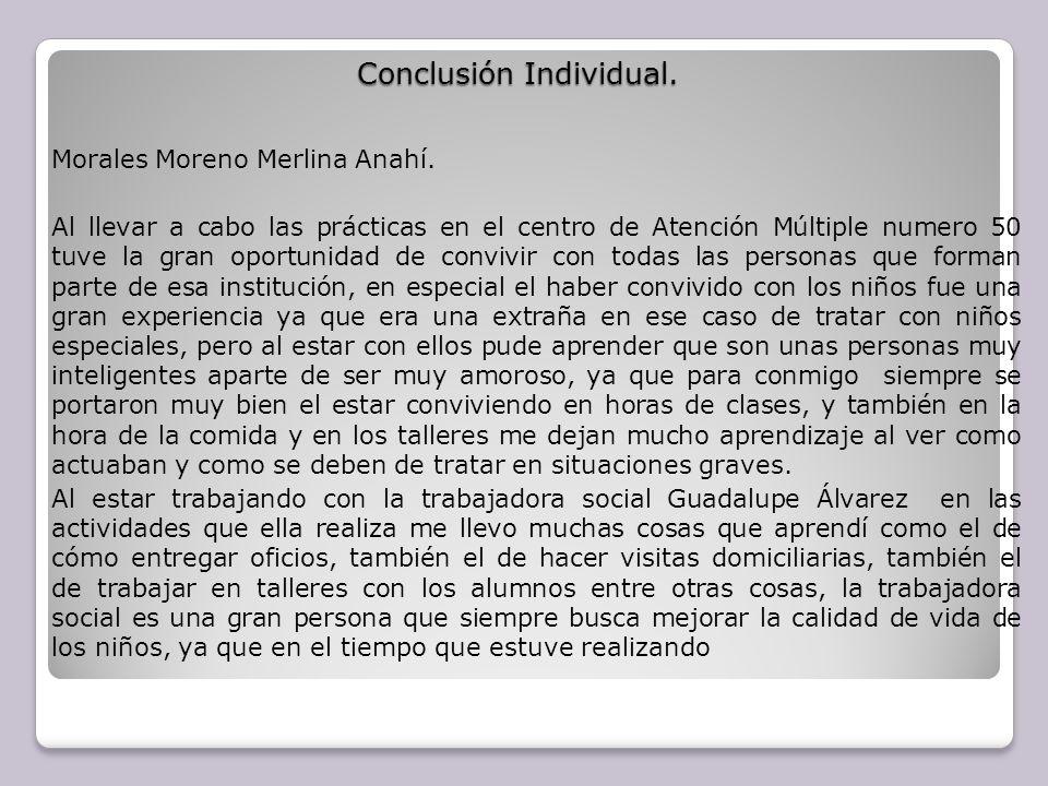 Conclusión Individual.