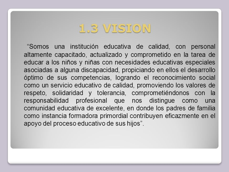1.3 VISION