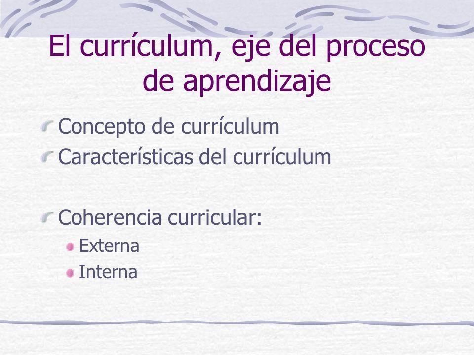 El currículum, eje del proceso de aprendizaje