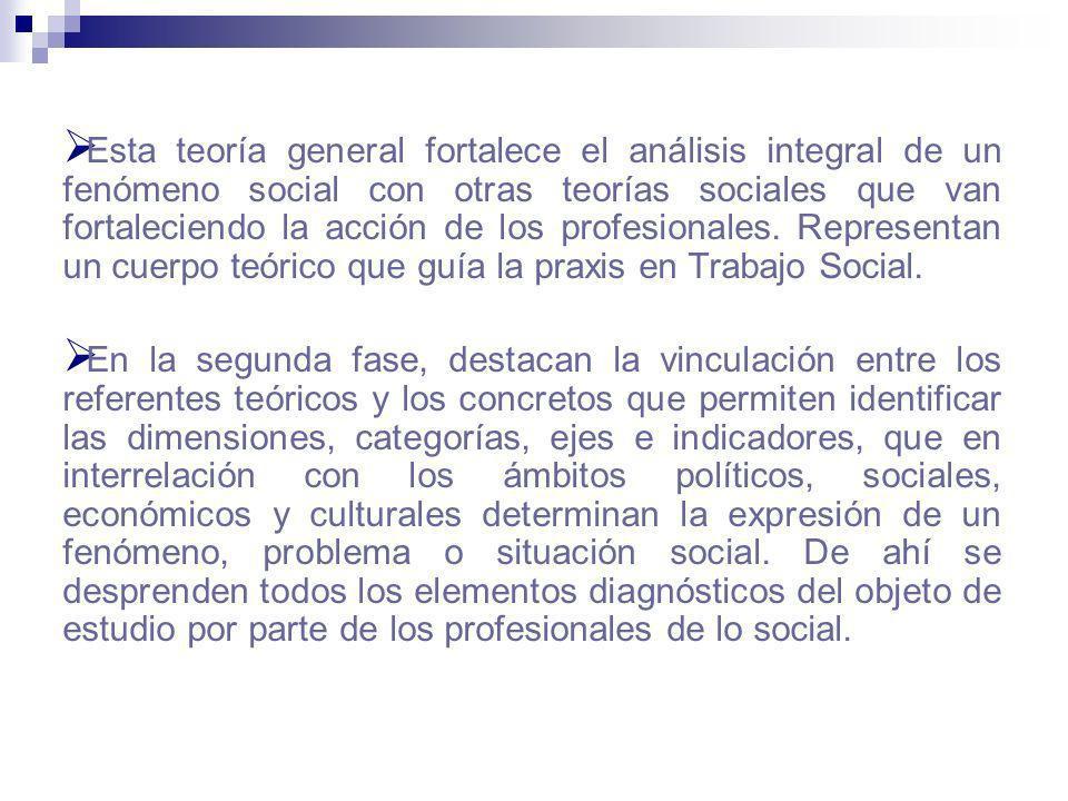 Esta teoría general fortalece el análisis integral de un fenómeno social con otras teorías sociales que van fortaleciendo la acción de los profesionales. Representan un cuerpo teórico que guía la praxis en Trabajo Social.