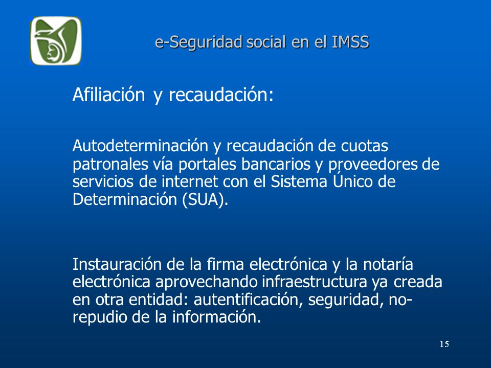 e-Seguridad social en el IMSS