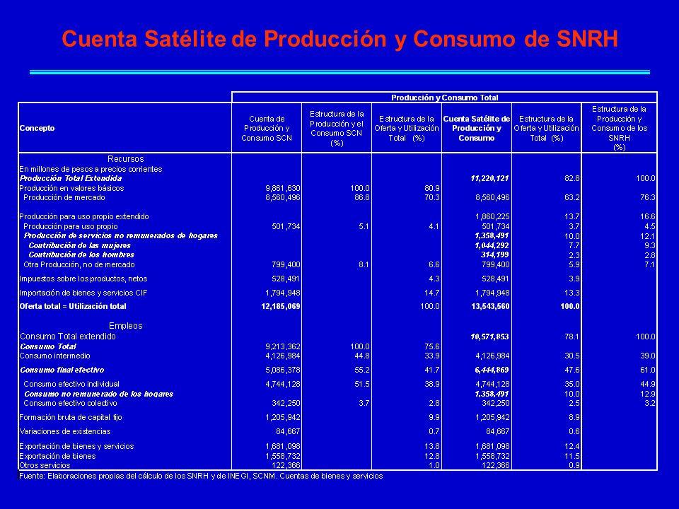 Cuenta Satélite de Producción y Consumo de SNRH