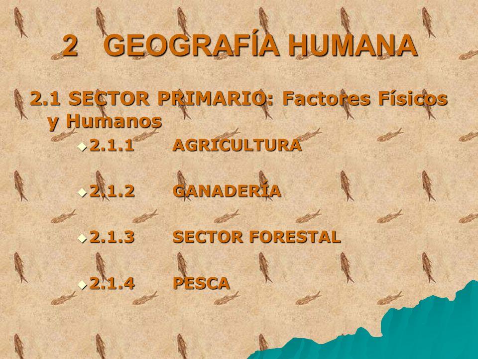 2 GEOGRAFÍA HUMANA 2.1 SECTOR PRIMARIO: Factores Físicos y Humanos