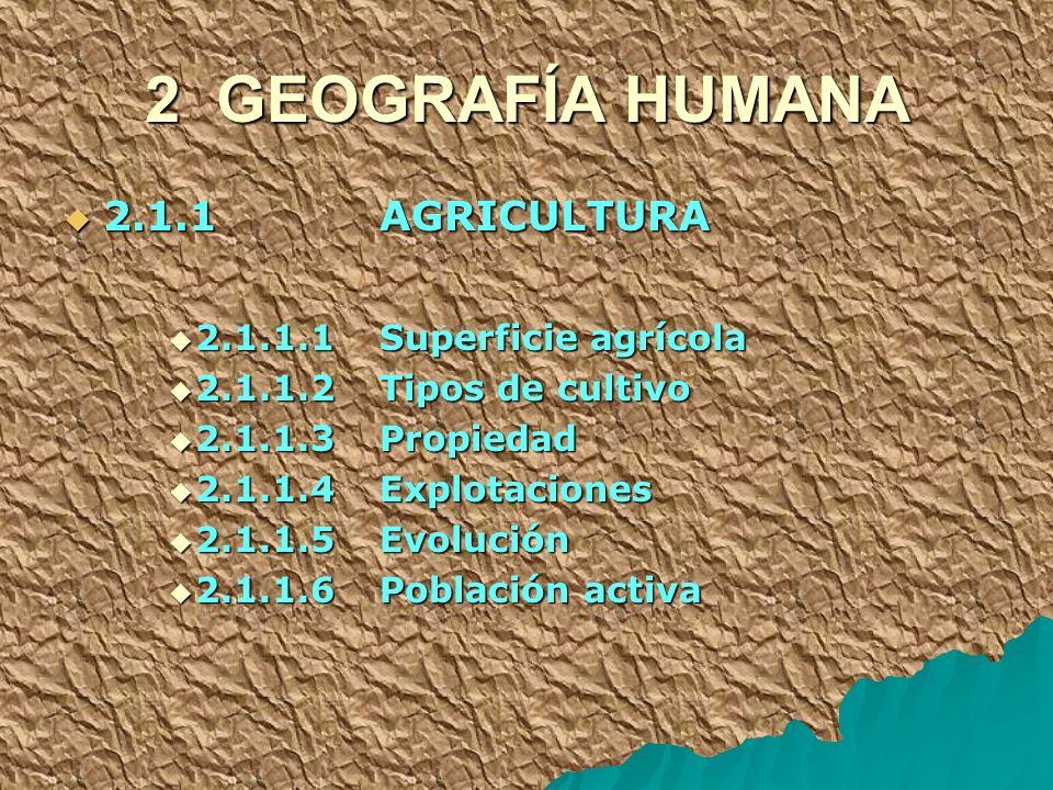 2 GEOGRAFÍA HUMANA 2.1.1 AGRICULTURA 2.1.1.1 Superficie agrícola