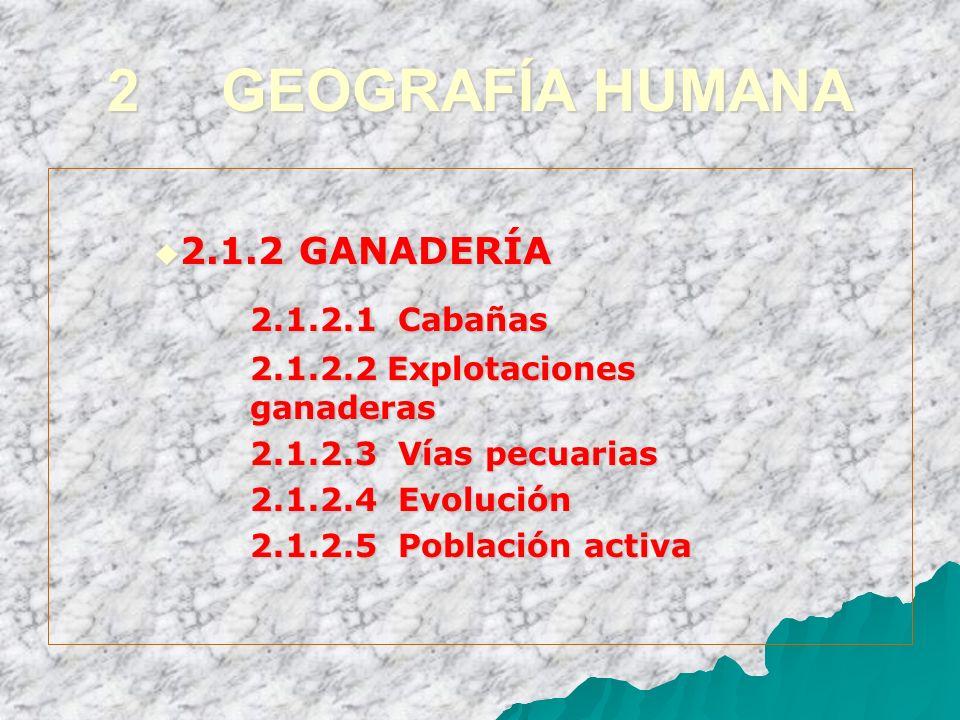 2 GEOGRAFÍA HUMANA 2.1.2.1 Cabañas 2.1.2 GANADERÍA