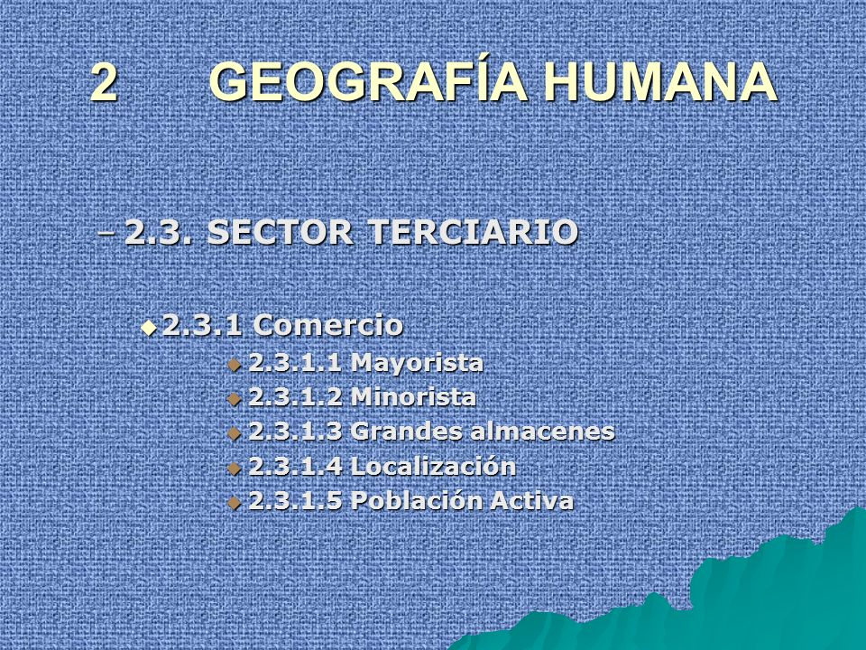 2 GEOGRAFÍA HUMANA 2.3. SECTOR TERCIARIO 2.3.1 Comercio
