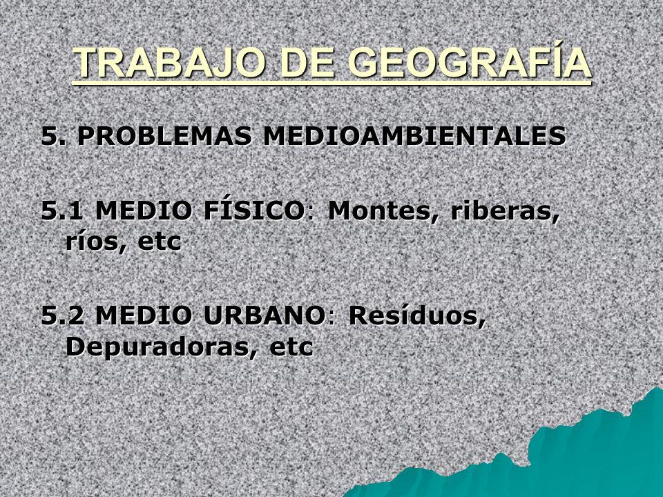 TRABAJO DE GEOGRAFÍA 5. PROBLEMAS MEDIOAMBIENTALES
