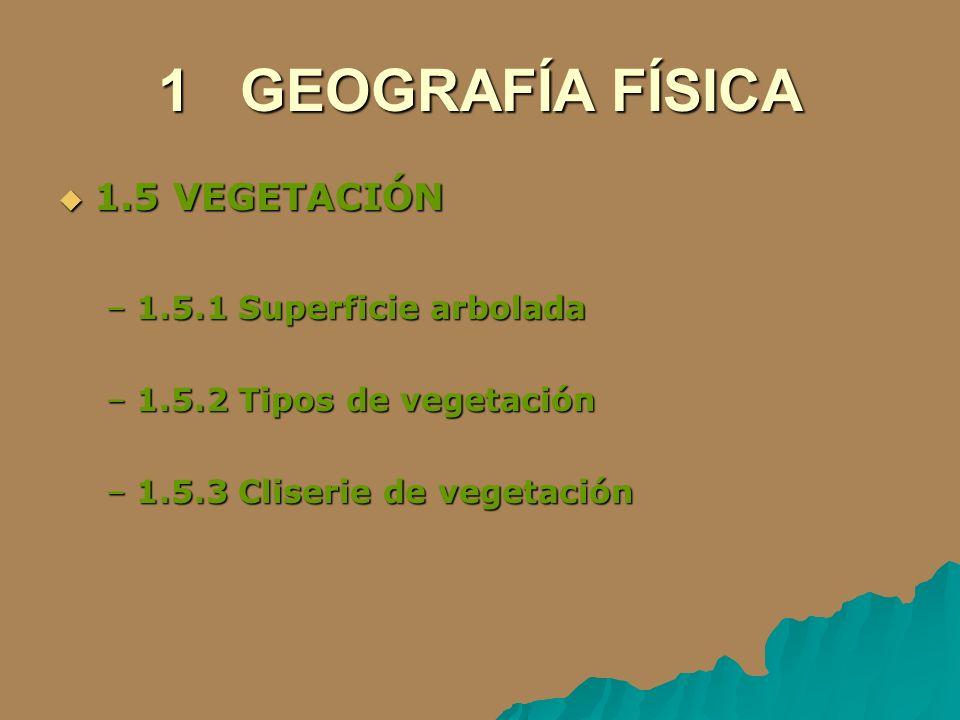 1 GEOGRAFÍA FÍSICA 1.5 VEGETACIÓN 1.5.1 Superficie arbolada