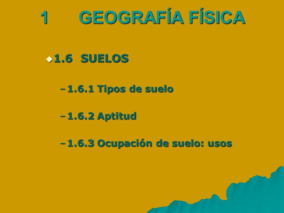 1 GEOGRAFÍA FÍSICA 1.6 SUELOS 1.6.1 Tipos de suelo 1.6.2 Aptitud