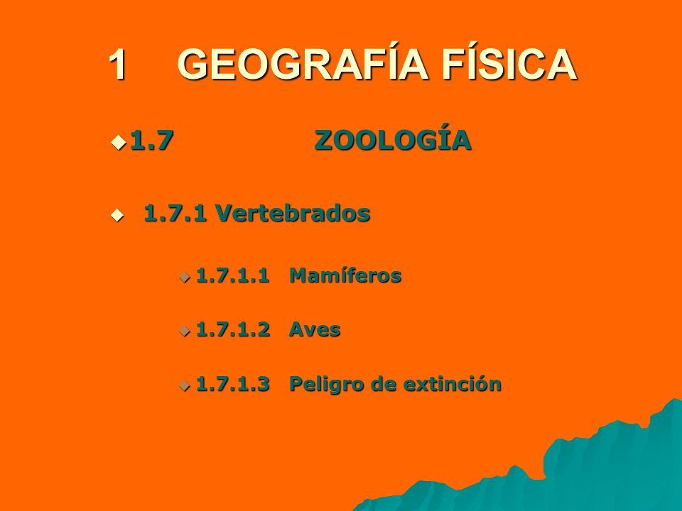 1 GEOGRAFÍA FÍSICA 1.7 ZOOLOGÍA 1.7.1 Vertebrados 1.7.1.1 Mamíferos