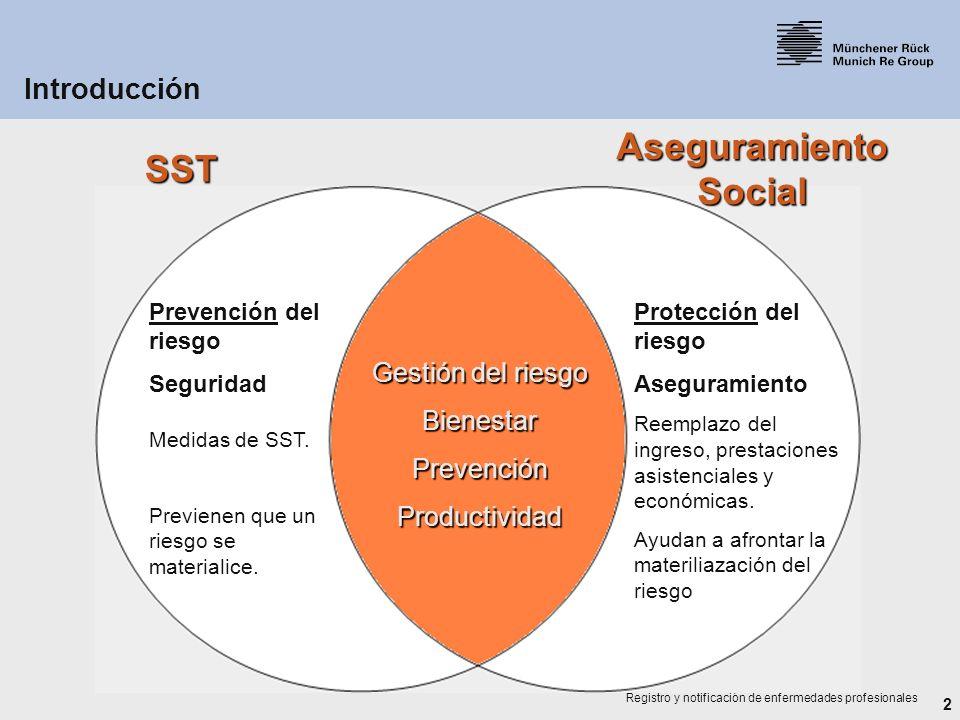 Aseguramiento Social SST