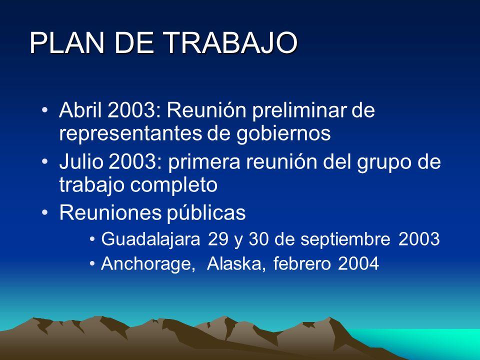 PLAN DE TRABAJO Abril 2003: Reunión preliminar de representantes de gobiernos. Julio 2003: primera reunión del grupo de trabajo completo.