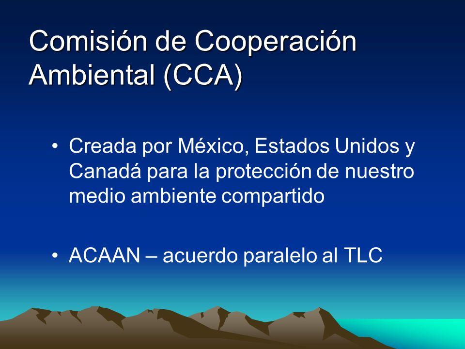 Comisión de Cooperación Ambiental (CCA)