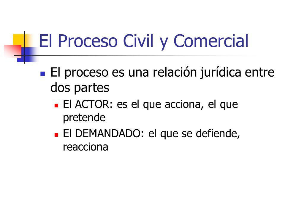 El Proceso Civil y Comercial