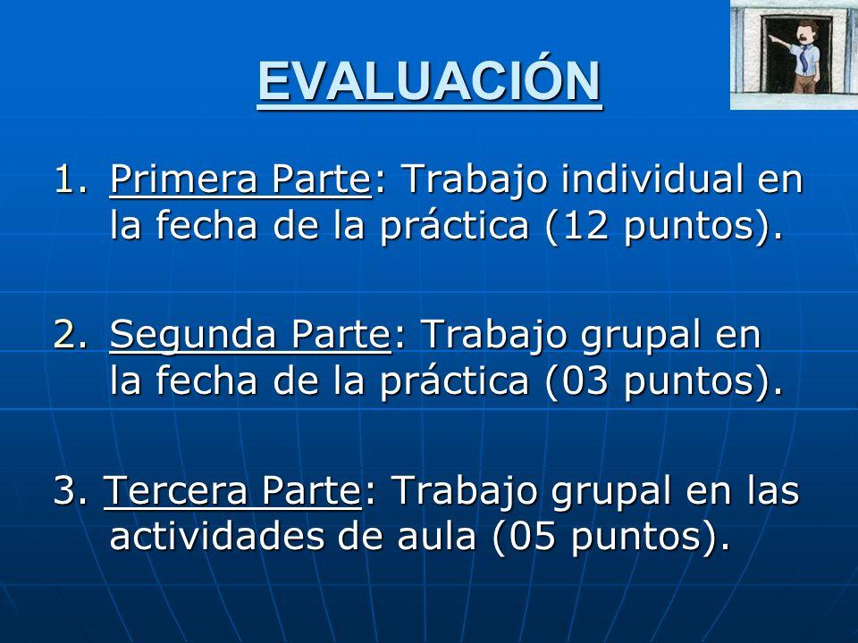 EVALUACIÓN Primera Parte: Trabajo individual en la fecha de la práctica (12 puntos).