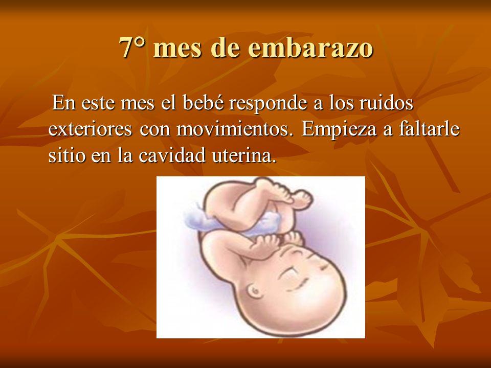 7° mes de embarazo En este mes el bebé responde a los ruidos exteriores con movimientos.