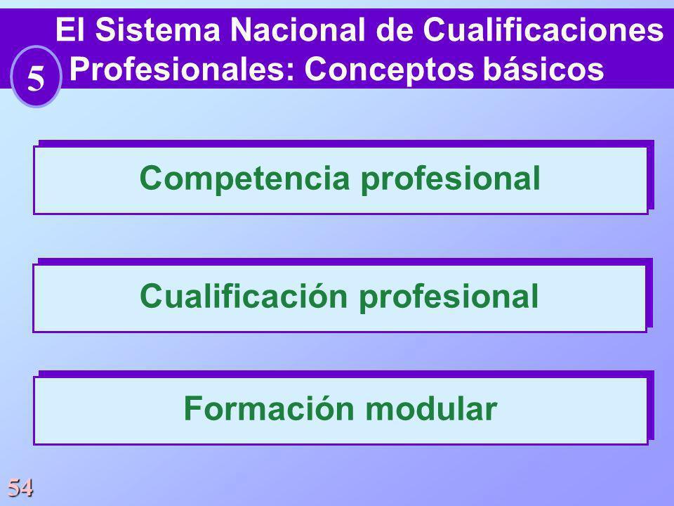 Competencia profesional Cualificación profesional