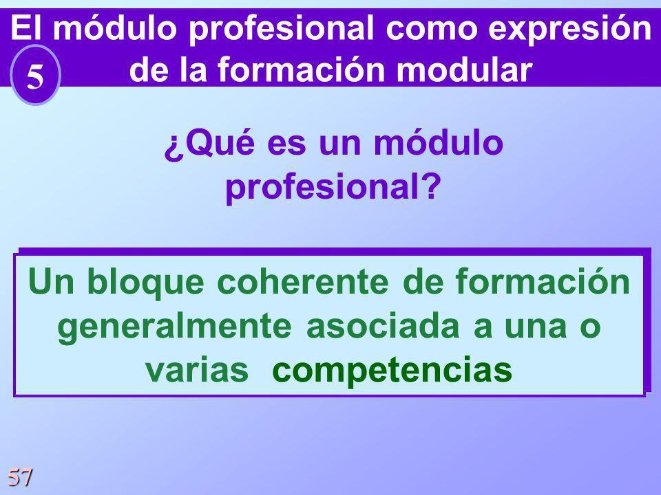 ¿Qué es un módulo profesional