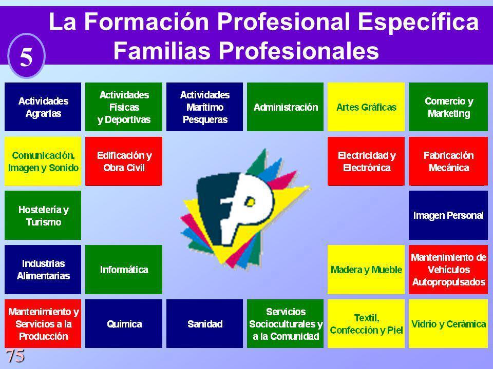 La Formación Profesional Específica Familias Profesionales