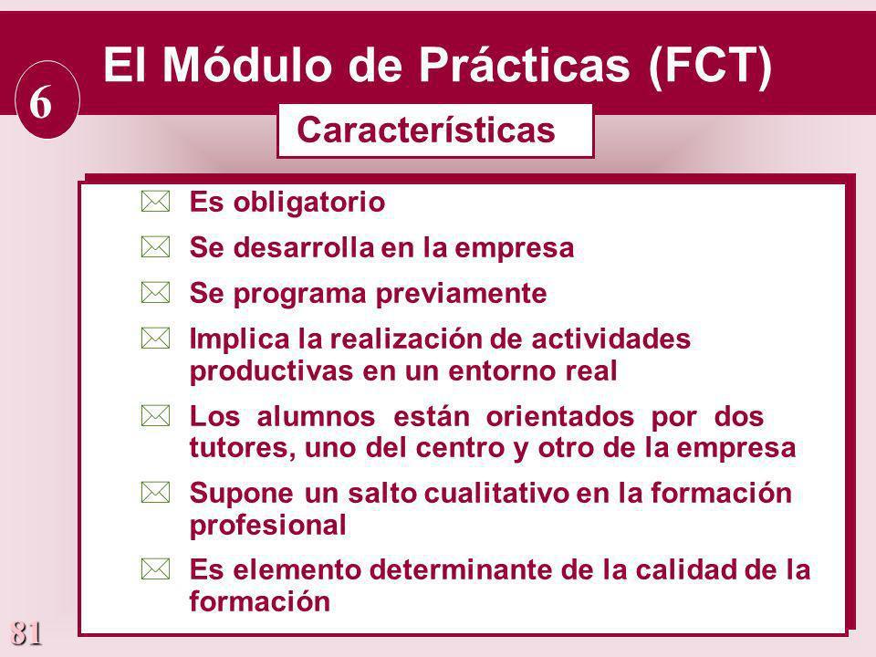 El Módulo de Prácticas (FCT)
