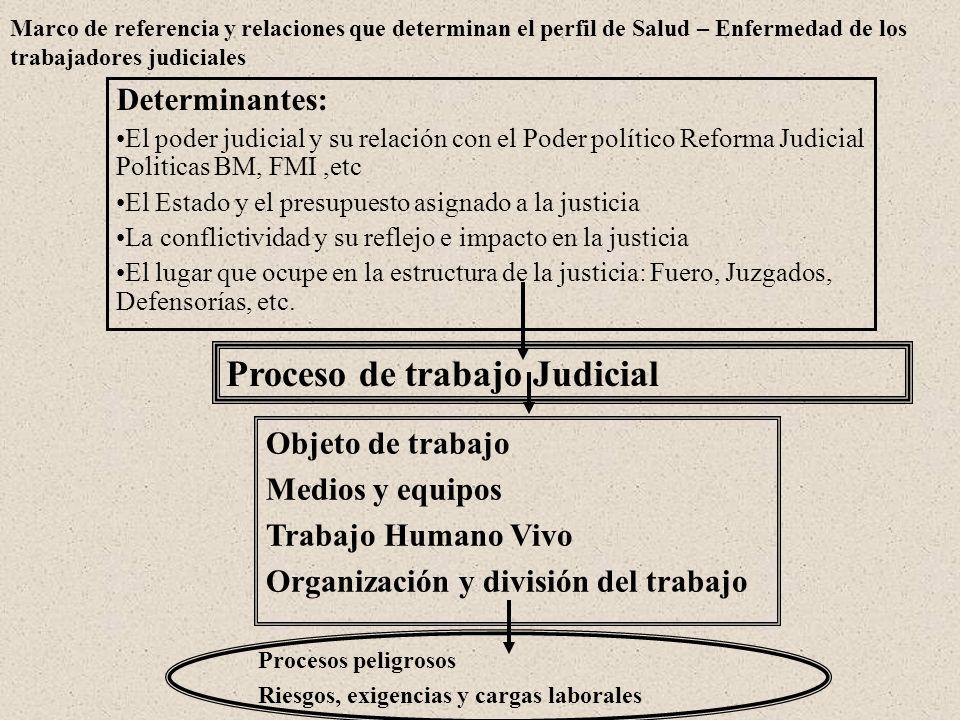 Proceso de trabajo Judicial