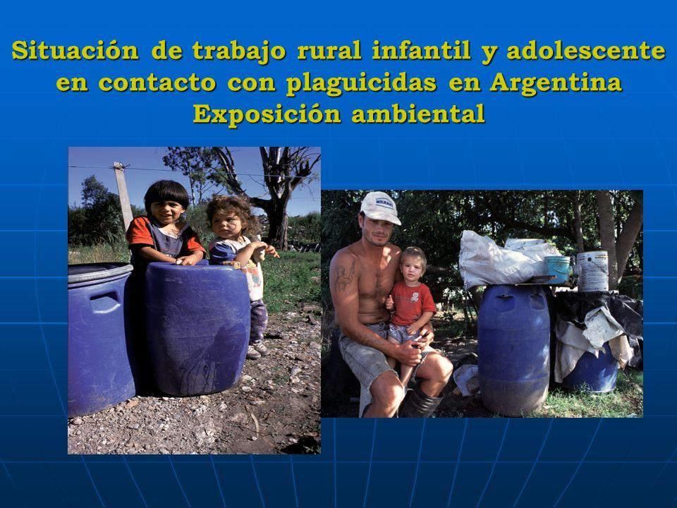 Situación de trabajo rural infantil y adolescente en contacto con plaguicidas en Argentina Exposición ambiental