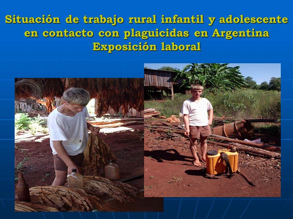 Situación de trabajo rural infantil y adolescente en contacto con plaguicidas en Argentina Exposición laboral