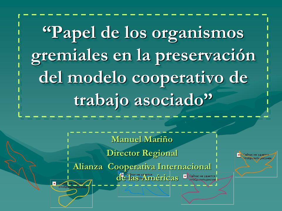 Alianza Cooperativa Internacional de las Américas
